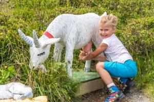 im Heidi Park - Kindererlebnispark in den Nockbergen