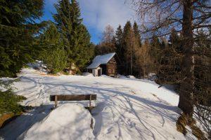 Falkert-Huette Winteransicht mit Bank und Laerche